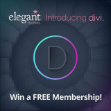 Giveaway : 3 Developer Accounts from Elegant Themes