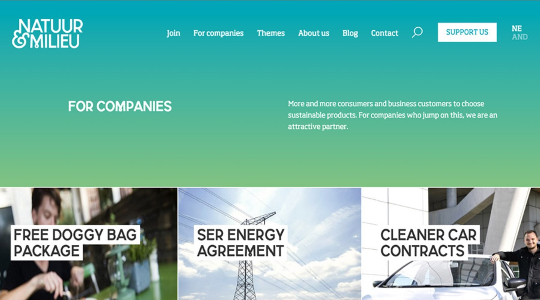 Sustainable product company website using analogous color scheme
